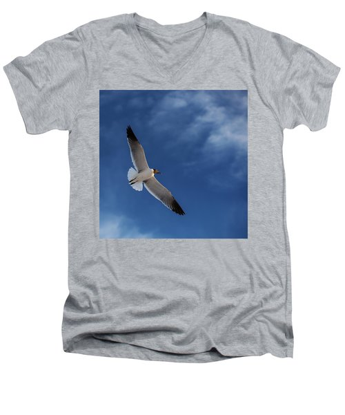 Glider Men's V-Neck T-Shirt by Don Spenner