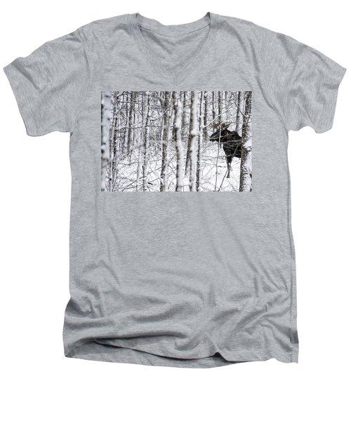 Glimpse Of Bull Moose Men's V-Neck T-Shirt