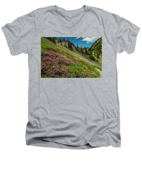 Glorious Mountain Heather Men's V-Neck T-Shirt
