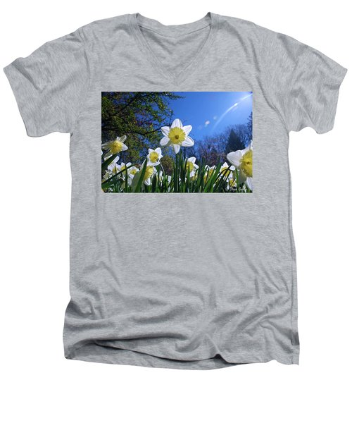 Glory Of Spring Men's V-Neck T-Shirt