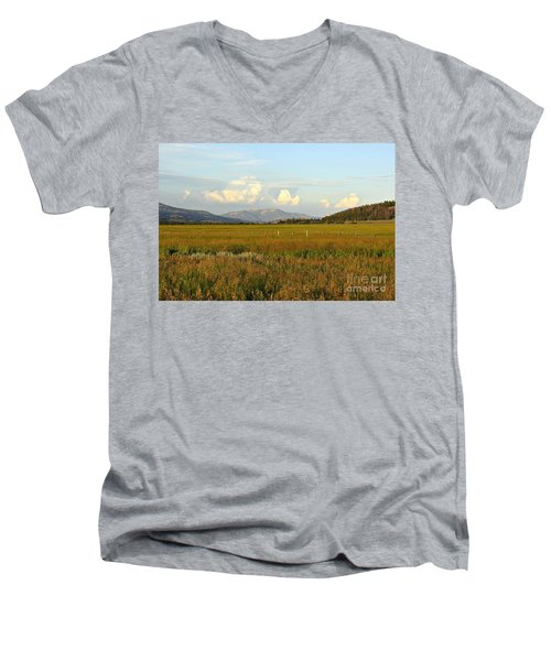 Glowing Meadow Men's V-Neck T-Shirt