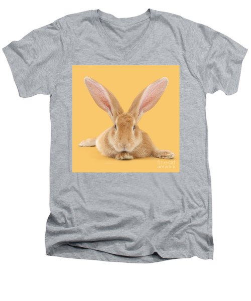 Go Ahead I'm All Ears Men's V-Neck T-Shirt