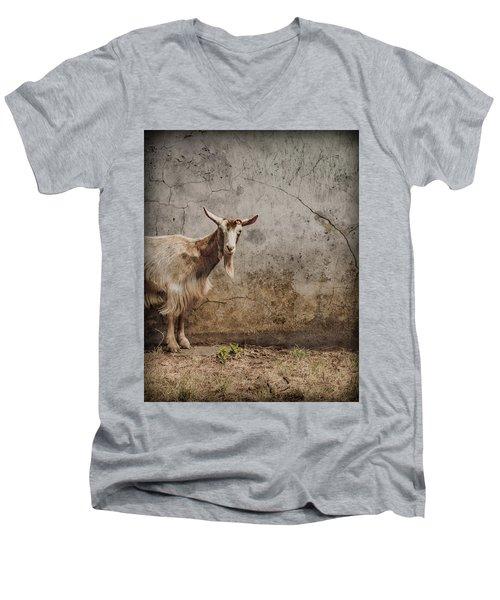 London, England - Goat Men's V-Neck T-Shirt