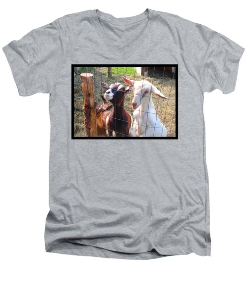 Goats Men's V-Neck T-Shirt by Felipe Adan Lerma