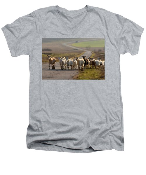 Goats Walking Home Men's V-Neck T-Shirt