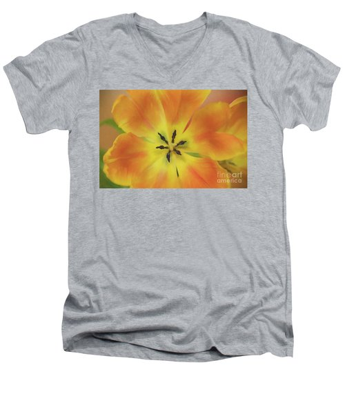 Gold Tulip Explosion Men's V-Neck T-Shirt