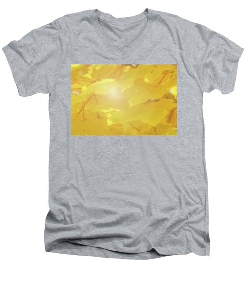 Golden Autumn Leaves Men's V-Neck T-Shirt