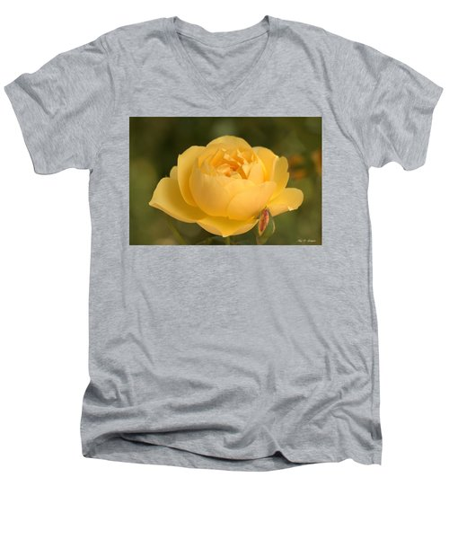 Golden Breath Men's V-Neck T-Shirt by Amy Gallagher