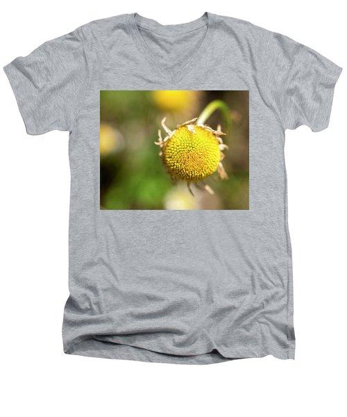 Golden Burst Men's V-Neck T-Shirt