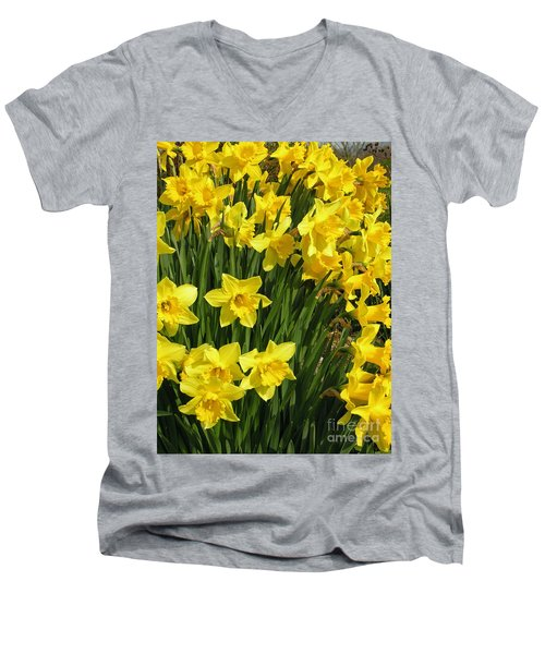 Golden Daffodils Men's V-Neck T-Shirt by Phil Banks