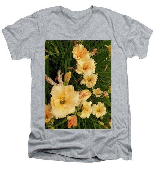 Golden Day Lilies Men's V-Neck T-Shirt