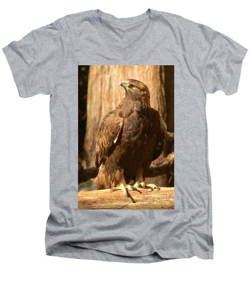 Golden Eagle Men's V-Neck T-Shirt by Sean Griffin