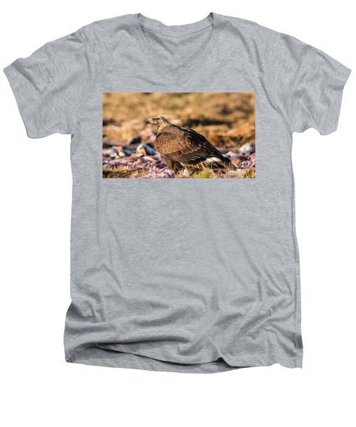 Men's V-Neck T-Shirt featuring the photograph Golden Eagle's Back by Torbjorn Swenelius