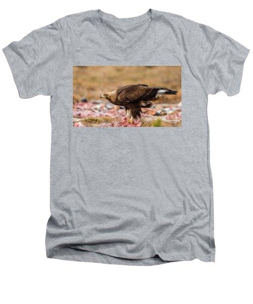 Men's V-Neck T-Shirt featuring the photograph Golden Eagle's Profile by Torbjorn Swenelius