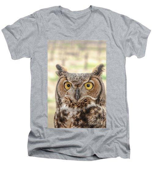 Golden Eyes Men's V-Neck T-Shirt
