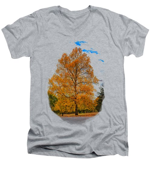 Golden Fall Colors 2 Men's V-Neck T-Shirt