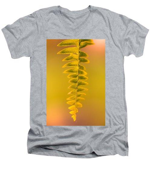 Golden Fern Men's V-Neck T-Shirt