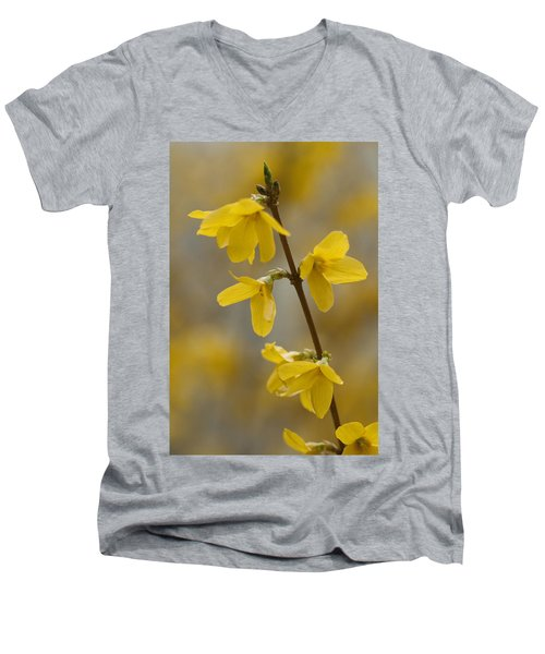 Golden Forsythia Men's V-Neck T-Shirt by Kathy Clark
