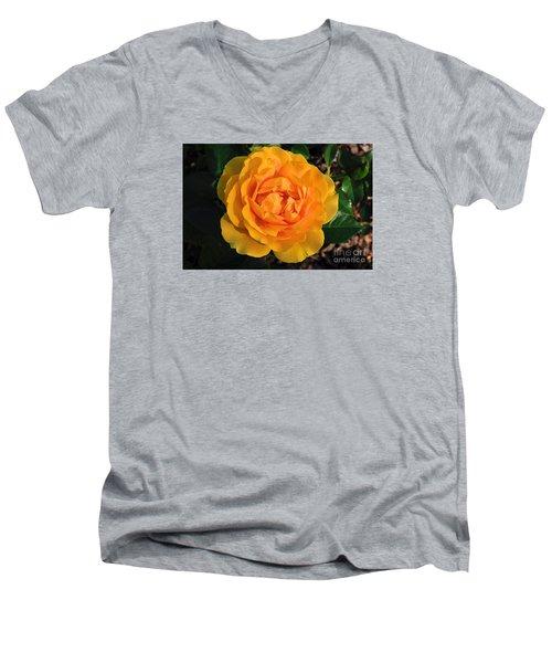 Golden Memories Men's V-Neck T-Shirt by Sandy Molinaro