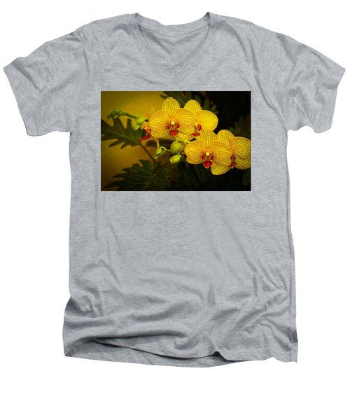 Golden Orchids Men's V-Neck T-Shirt
