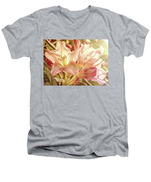 Golden Reserve Men's V-Neck T-Shirt