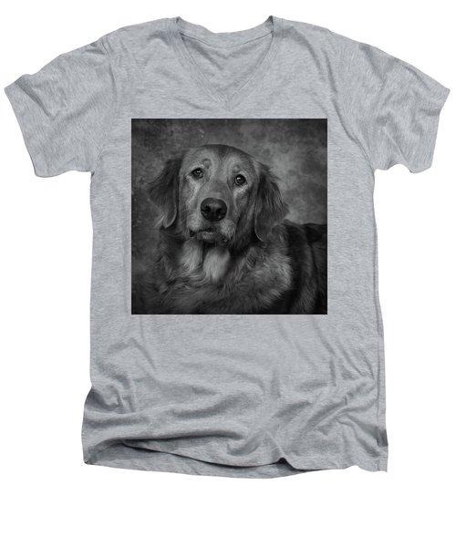 Golden Retriever In Black And White Men's V-Neck T-Shirt by Greg Mimbs
