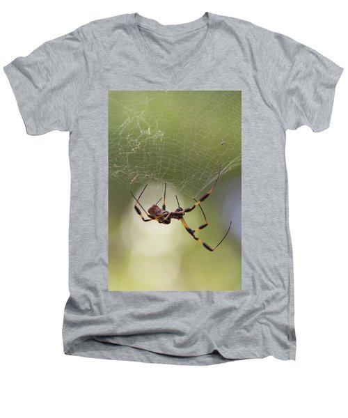 Golden-silk Spider Men's V-Neck T-Shirt