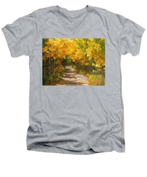 Golden Tunnel Men's V-Neck T-Shirt
