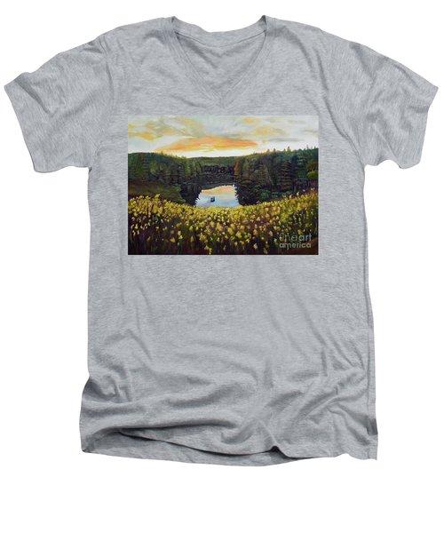 Goldenrods On Davenport Lake-ellijay, Ga  Men's V-Neck T-Shirt by Jan Dappen