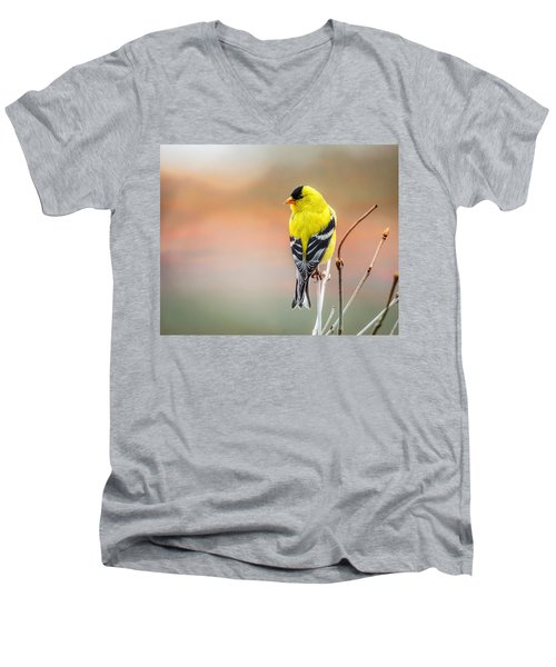 Goldfinch At Sunrise Men's V-Neck T-Shirt