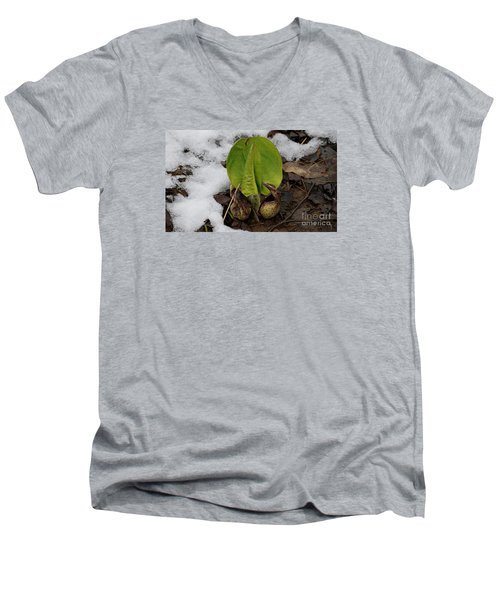 Goodbye Winter Men's V-Neck T-Shirt by Randy Bodkins