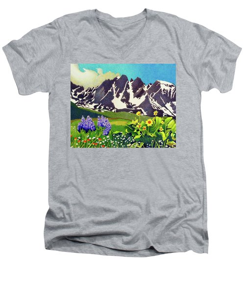 Gore Range Wildflowers Men's V-Neck T-Shirt