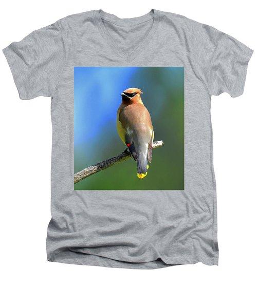 Gorgeous Cedar Waxwing Men's V-Neck T-Shirt