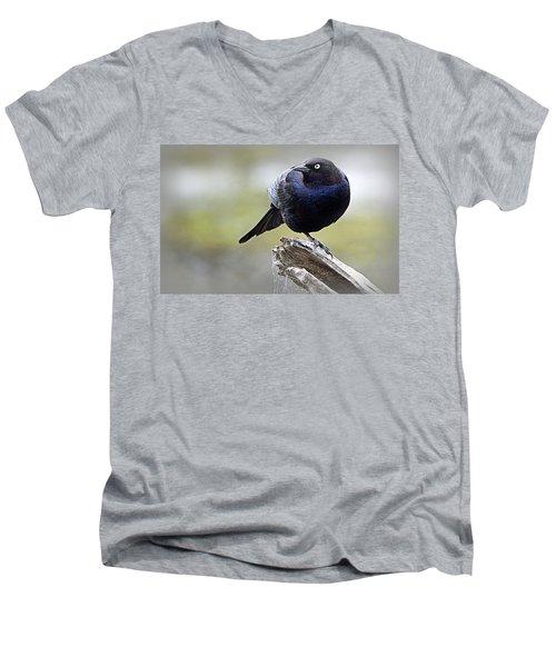 Grackle Resting Men's V-Neck T-Shirt