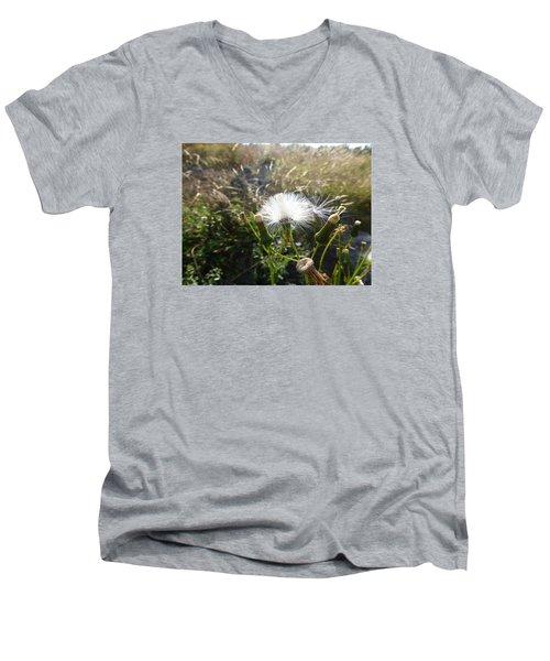Grand Manan Dandelion  Men's V-Neck T-Shirt