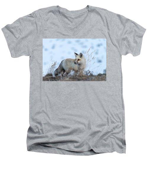 Grand Teton Fox Men's V-Neck T-Shirt