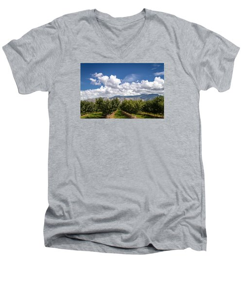 Grand Valley Orchards Men's V-Neck T-Shirt by Teri Virbickis