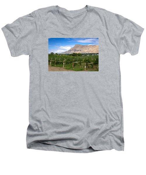 Grand Valley Vineyards Men's V-Neck T-Shirt by Teri Virbickis