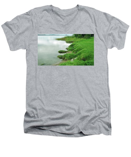 Grass And Water Men's V-Neck T-Shirt