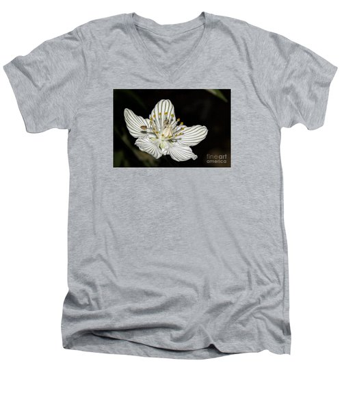Grass Of Parnassus Men's V-Neck T-Shirt by Barbara Bowen