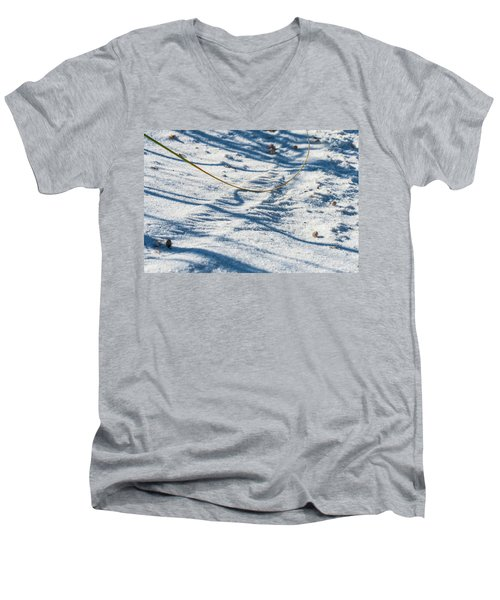 Grass Scapes In The Sand Men's V-Neck T-Shirt