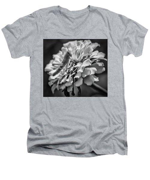 Grasshopper Men's V-Neck T-Shirt