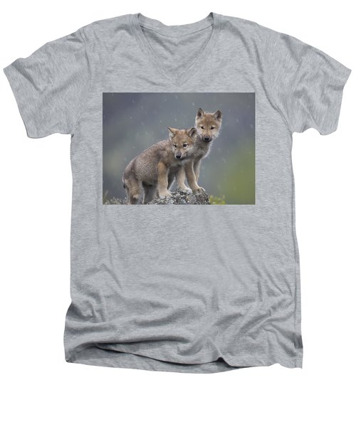 Gray Wolf Canis Lupus Pups In Light Men's V-Neck T-Shirt