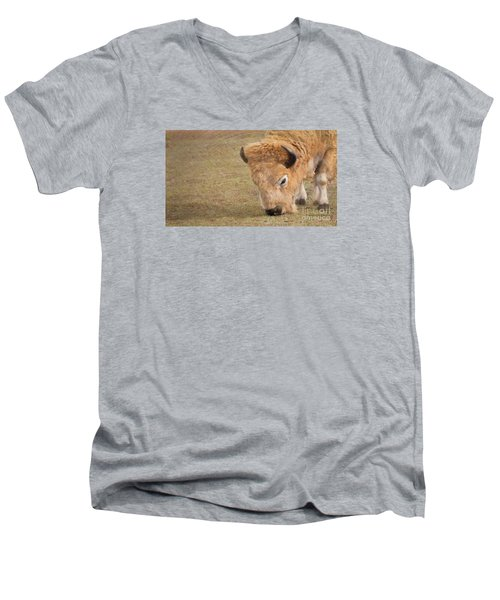 Men's V-Neck T-Shirt featuring the photograph Grazing Buffalo by Laurinda Bowling