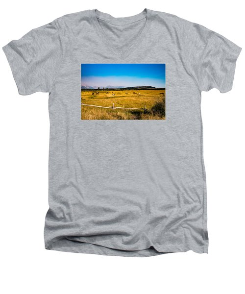 Grazing Horses Men's V-Neck T-Shirt by Cathy Donohoue
