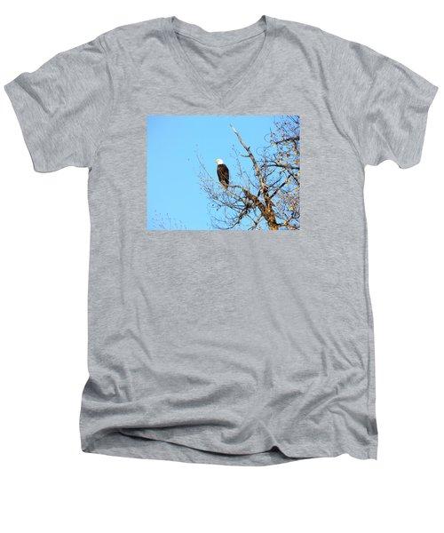 Great American Bald Eagle Men's V-Neck T-Shirt by Adam Cornelison
