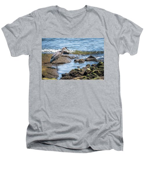 Great Blue Heron Fishing On The Chesapeake Bay Men's V-Neck T-Shirt