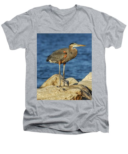 Great Blue Heron On Rock Men's V-Neck T-Shirt