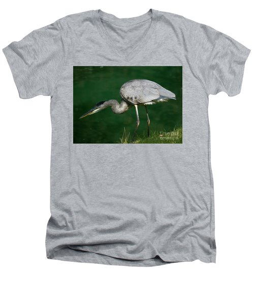 Great Blue Heron Series Men's V-Neck T-Shirt