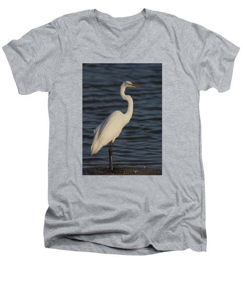 Great Egret In The Last Light Of The Day Men's V-Neck T-Shirt